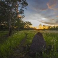 """"""" Senja Di Taman Nasional Wasur """""""
