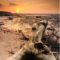 Sunset di Bintuni