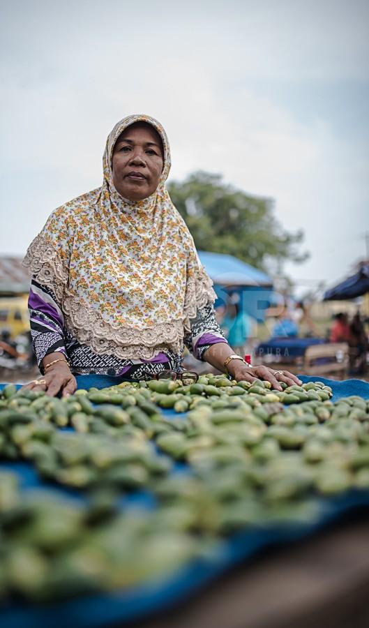 Pinang Hijab